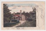 MEDIASCH,PAVILION,LITHO, CIRCULATA 1900,ROMANIA., Fotografie, Medias