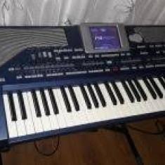 KORG PA 800 - Orga