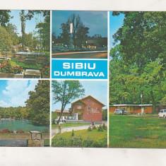 Bnk cp Sibiu - Dumbrava - uzata - Carte Postala Transilvania dupa 1918, Circulata, Printata