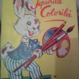 IEPURILĂ COLORILĂ - Carte de colorat