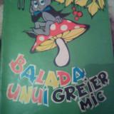 BALADA UNUI GREIER MIC - Carte de colorat