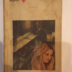 Somerset Maugham, Valul pictat - Roman