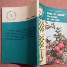 Forme De Coroane Pentru Pomii De Langa Casa - Ioan Militiu, Ioan Godeanu - Carte gradinarit