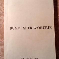 Buget si trezorerie, Dr. Radu Berceanu, Editura Silania, Zalau, 2006