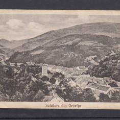 SALUTARE DIN ORAVITA VEDERE GENERALA CIRCULATA 1926 - Carte Postala Banat dupa 1918, Printata