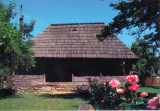 Carte postala CP GJ031 Hobita - Casa memoriala Constantin Brancusi, Necirculata, Printata