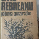 Liviu Rebreanu - Padurea spanzuratilor