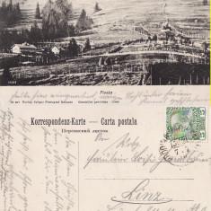 Ploska ( Bucovina )- 2 carti postale - Carte Postala Bucovina pana la 1904, Circulata, Printata