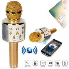 Microfon wireless sistem karaoke profesional cu boxe si bluetooth iOS, Android