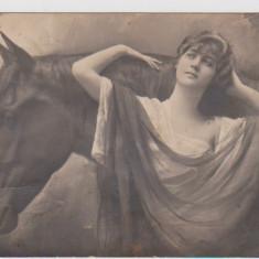 CARTE POSTALA-FEMEIE SI CAL 1923