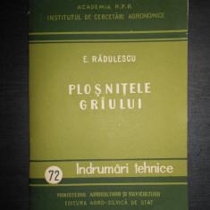 E. RADULESCU - PLOSNITELE GRAULUI