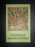 G. MECHILI - PADURILE  MAREA NOASTRA BOGATIE NATIONALA