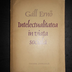 GALL ERNO - INTELECTUALITATEA IN VIATA SOCIALA