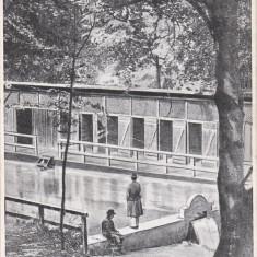 CODLEA-ZEIDEN, BAILE CARMEN SILVA BAZIN, ROMANIA. - Carte Postala Transilvania dupa 1918, Necirculata, Fotografie