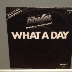 FRANK DUVAL - WHAT A DAY/FADE OUT (1984/TELDEC/RFG) - Vinil Single '7/Impecabil - Muzica Pop