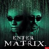 Enter the Matrix -  PS2 [Second hand]