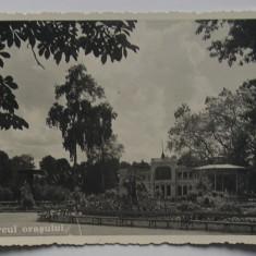 Carte Postala  veche - Cluj, Parcul Orasului 1939 -  necirculata, tip foto