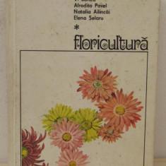 FLORICULTURA-V.SONEA
