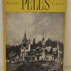 MUZEUL PELES SINAIA - Album Muzee