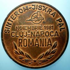 B.348 ROMANIA RSR CEHOSLOVACIA MEDALIE SINTEROM CLUJ-NAPOCA 1981 47mm - Medalii Romania