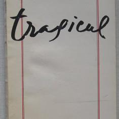 Gabriel Liiceanu - Tragicul - Filosofie