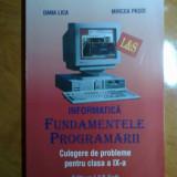 Dana lica informatica fundamentele programarii clasa ix - Carte Limbaje de programare