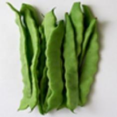 Fasole alba- Phaseolus vulgaris 30 boabe rare