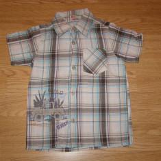 Camasa pentru copii baieti de 2-3 ani de la topolino, Marime: Masura unica, Culoare: Din imagine