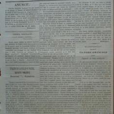 Reforma, ziar politicu, juditiaru si litteraru, an 2, nr. 59, 1860