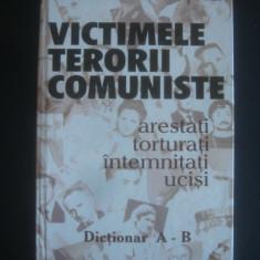 CICERONE IONITOIU - VICTIMELE TERORII COMUNISTE - Istorie