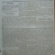 Reforma, ziar politicu, juditiaru si litteraru, an 2, nr. 69, 1860