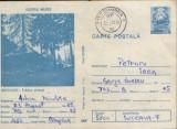 Intreg postal CP 1988 circulat - Rastolita,judetul Mures - Tabara scolara, Dupa 1950