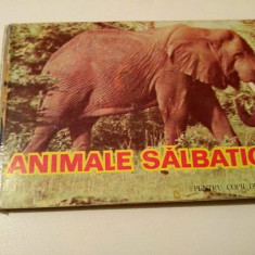 Carte veche pentru copii de 1-3 ani ANIMALE SALBATICE, Ed. Helicon Timisoara - Carte Epoca de aur