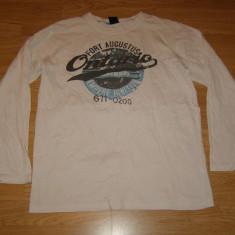 Bluza pentru copii baieti de 14-15 ani de la dognose, Marime: Masura unica, Culoare: Din imagine