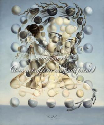 Tablou Reproducere pe Panza Canvas Salvator Dali Pictura Galatea of the Spheres foto