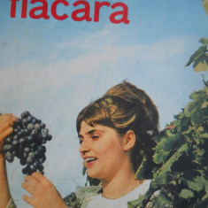 HOPCT REVISTA  FLACARA NR 36-SEPT 1967  LA CULES DE STRUGURI
