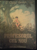 Calin Gruia - Profesorul cel nou. Ilustratii de C-tin Placinta, Calin Gruia