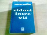ZIDURI INTRE VII-ALEXANDRU MIRONESCU