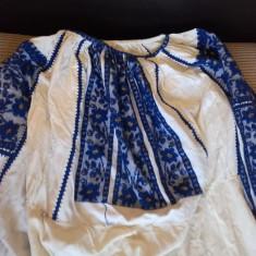 XXX IE/CAMASA POPULARA, ZONA ARGES/DAMBOVITA, VECHIME PESTE 50 ANI - Costum popular