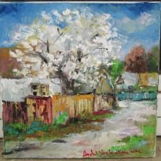 Siminiuc Peisaj rustic de primavara Tablou pictat in ulei pe panza 40x40 cm - Pictor roman, Natura statica, Realism