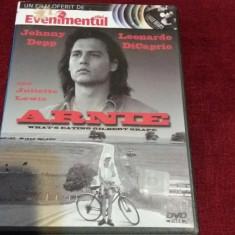 XXP FILM DVD ARNTE - Film drama Altele, Romana