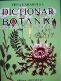 Dictionar botanic - Cele mai cunoscute plante din flora Romaniei