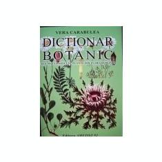 Dictionar botanic - Cele mai cunoscute plante din flora Romaniei - Atlas