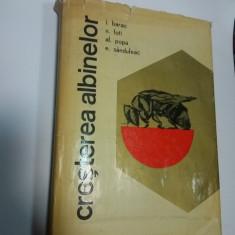 CRESTEREA ALBINELOR - Barac, Foti, Popa, Sanduleac - 1965