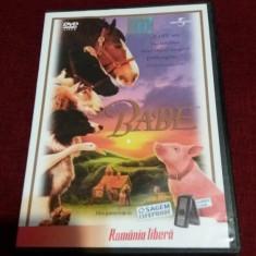 XXP FILM DVD BABE - Film comedie Altele, Romana