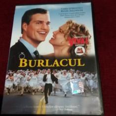 XXP FILM DVD BURLACUL - Film romantice Altele, Romana