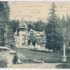 3099 - Litho, Prahova, SINAIA, PELISOR Castle - old postcard - used - 1903 - Carte Postala Muntenia pana la 1904, Circulata, Printata