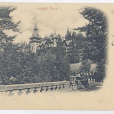 3741 - Litho, Prahova, SINAIA, PELES Castle - old postcard - used - 1900