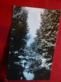 Ilustrata  Pitesti -Parcul Arges  circulat 1966, Circulata, Fotografie