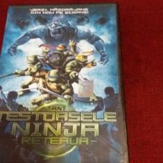 XXP FILM TESTOASELE NINJA RETEAUA, DVD, Romana